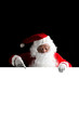 Quadro Santa Claus holding a white blank sign isolated on black  background