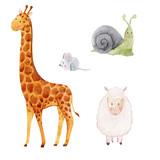 Cute watercolor animal set - 181886531