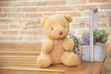 Teddy Bear on Wood, Background, Old Brick Wall