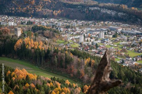 Fotobehang Pistache Blick auf Feldkirch vom Schellenberg (Liechtenstein)