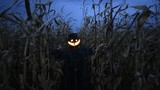 Scary scarecrow in a hat - 181951183
