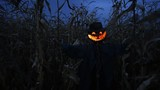 Scary scarecrow in a hat - 181951586