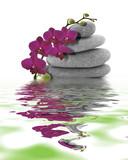 Orchidée rouge sur galet et son reflet © antoine