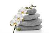 Orchidée blanche sur galet - 181956387