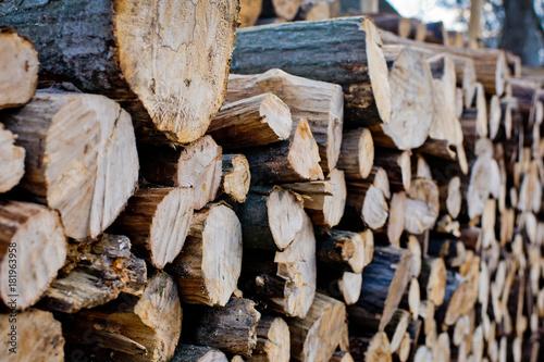 Deurstickers Brandhout textuur Wood texture background of cut logs. Pile of logs.