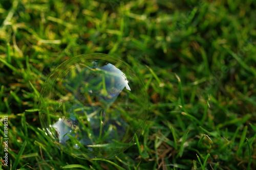 Keuken foto achterwand Gras soap bubble