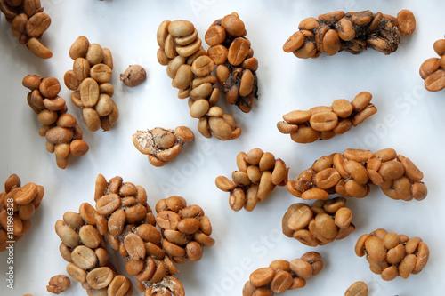 Papiers peints Cafe Civet Coffee beans in Southeast Asia.