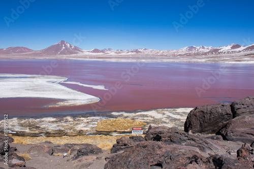 Staande foto Lavendel laguna colorada , paisaje turistico