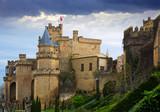 Castle of Olite.  Spain - 182008322