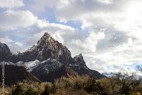 Foto op Plexiglas Wit Zion National Park, winter 3