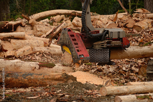 Foto op Canvas Natuur the automatic log cutter attachment on this digger trims logs to length