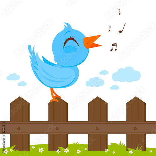 Fototapeta Blue bird singing on a wooden fence.