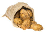 a fresh raw potatoes in a sack on a white background - 182026966