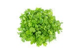 fresh green coriander leaf vegetable isolated on white background  - 182038711