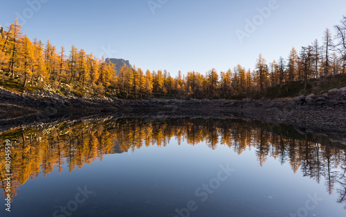 Tuinposter Blauwe hemel Mountain lake colorful larches reflection in sunny autumn fall day outdoor.