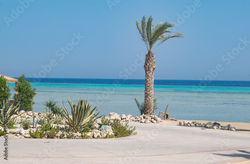 Foto op Canvas Tropical strand A relaxing seaside view of Breakers beach, Somabay, Hurghada, Egypt.