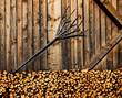 Holzwand mit Brennholz - 182064781