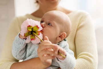 close up of mother and little baby boy with flower