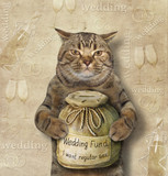The cat is holding a money box for wedding. - 182080769