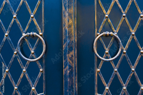 Foto op Canvas Vlinders in Grunge magnificent wrought-iron gates, ornamental forging, forged elements close-up