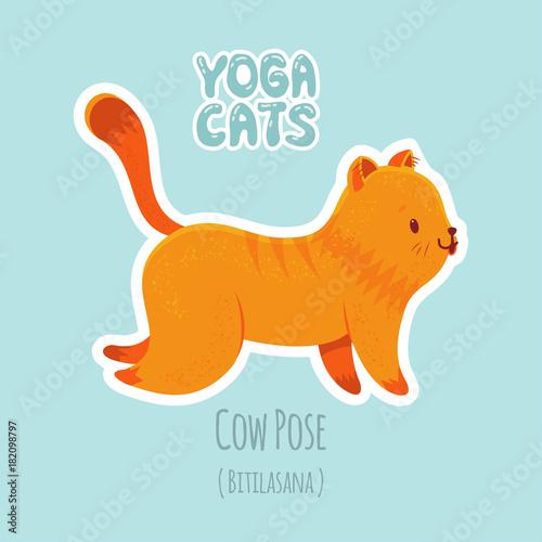 Fototapeta Sticker with cute cat practicing yoga