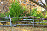 A split rail fence holding back thick brush. - 182109337