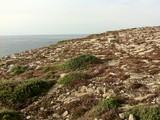 Terre lunaire bretonne