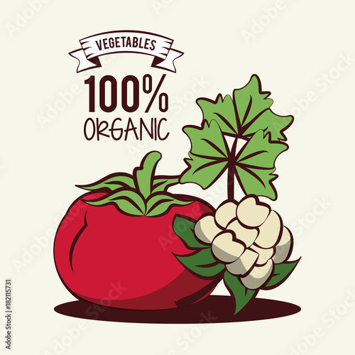 Organic vegetables icon vector illustration graphic design icon vector illustration graphic design