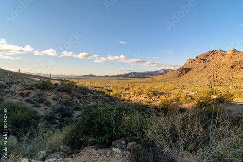 Plexiglas Arizona Arizona Sonoran desert
