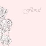 Векторная иллюстрация скетч цветы маки мак sketch цветочный фон открытка