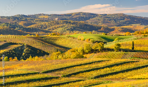 Aluminium Oranje sunset over the chianti hills in autumn in province of Siena Tuscany Italy...