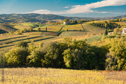 In de dag Oranje sunset over the chianti hills in autumn in province of Siena Tuscany Italy...