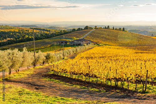 Papiers peints Miel sunset over the chianti hills in province of Siena Tuscany Italy