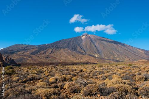 Staande foto Canarische Eilanden Pico del Teide, mountain landscape, Tenerife , Canary Islands