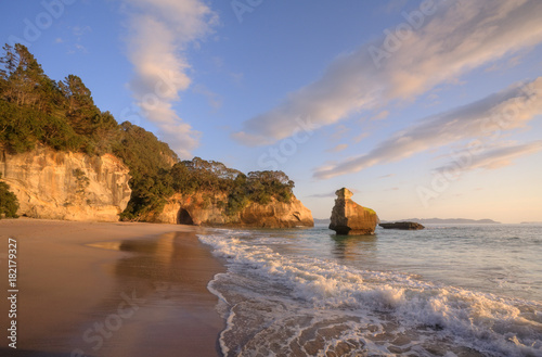 Foto op Plexiglas Cathedral Cove Coromandel Cathedral Cove Early Morning Light