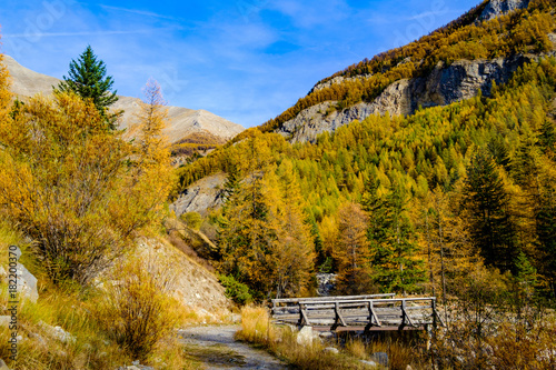 Foto op Aluminium Honing Paysage alpin. Les montagnes, la forêt, la rivière et le pont en bois. Les Alpes françises.