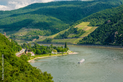 Staande foto Wijngaard Vineyards at Rhine Valley in Germany