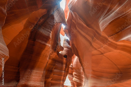 Foto op Plexiglas Rood traf. Upper Antelope Canyon. Natural rock formation in beautiful colors. Beautiful wide angle view of amazing sandstone formations. Near Page at Lake Powell, Arizona, USA