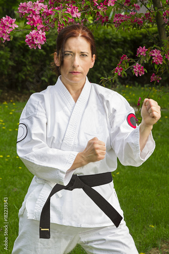 Martial art warrior woman Poster