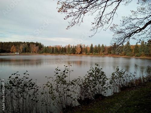 Herbstlandschaft am See im November