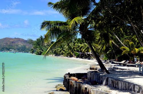 Foto op Plexiglas Tropical strand Paradis