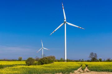 Wind turbines on a wind farm, West Pomerania region of Poland