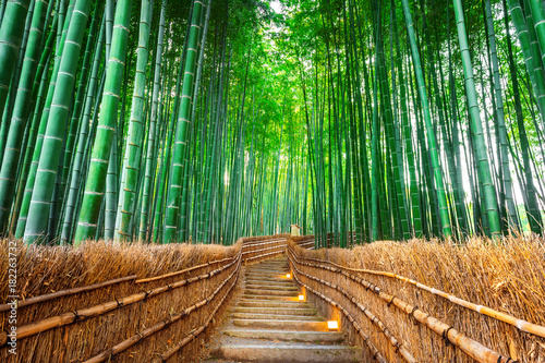 Fotobehang Bamboe Bamboo Forest in Kyoto, Japan.
