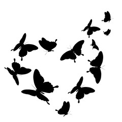black butterfly, heart, isolated on a white