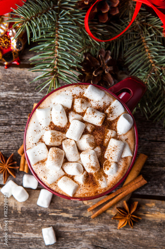 Foto op Canvas Chocolade Cup of hot cocoa or hot chocolate on wooden background
