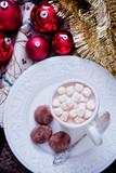 Christmas Hot Chocolate with marshmallow, christmas cocoa - 182310712