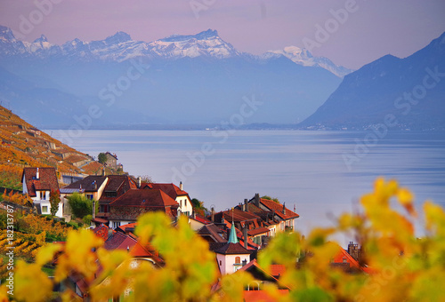 Poster Honing Vineyard terraces in the famous Lavaux wine region (UNESCO World Heritage Site since 2007) overlooking the northern shores of Lake Geneva, Canton of Vaud, Switzerland