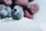 Fresh berries of blueberries on a cold ice against a background of frozen berries