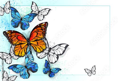 Keuken foto achterwand Vlinders in Grunge Background with monarchs and morpho