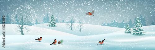 Foto op Plexiglas Lichtblauw Vector Winter Landscape
